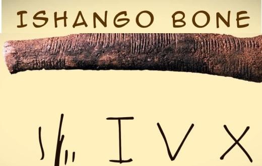 Isango_bone2